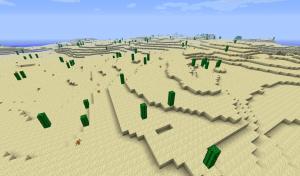 desert_poust_minecraft_cz_biom