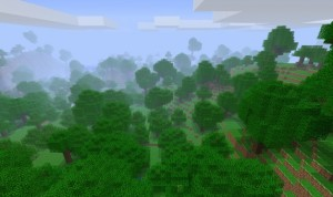 forest_les_minecrft_cz